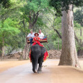 Angkor Wat Elephant with passengers